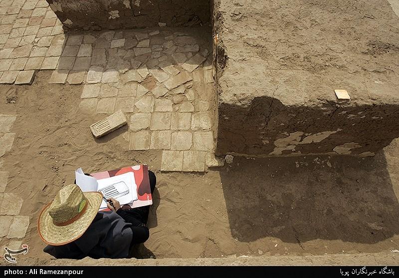 چرا باید سازمان باستان شناسی کشور ایجاد شود/ یک نگرانی ملی درباره باستان شناسان ایران