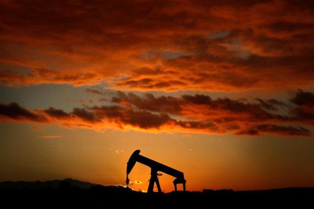 رشد دوباره قیمت نفت