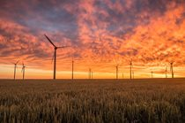 اشتغالزایی 43 هزار نفری انرژیهای نو در کشور