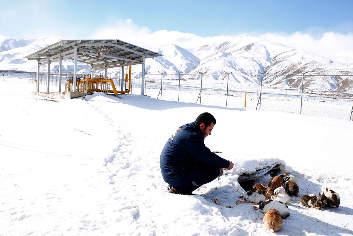 گرمای گاز درسرمای آذربایجان غربی