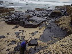 توافق سه کشور برای حل بحران آلودگی نفتی روسیه
