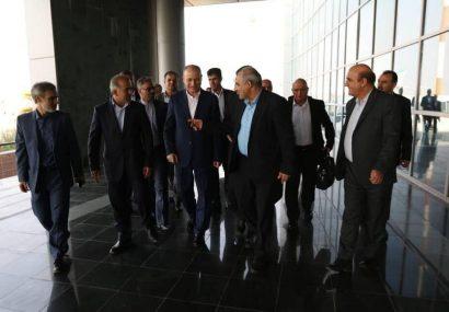 وزیر نفت و منابع معدنی سوریه وارد عسلویه شد
