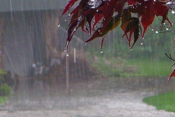 کاهش ۴ درصدی بارشها در سال آبی جدید