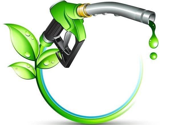 تولید سوخت زیستی توسط دو دانشآموز