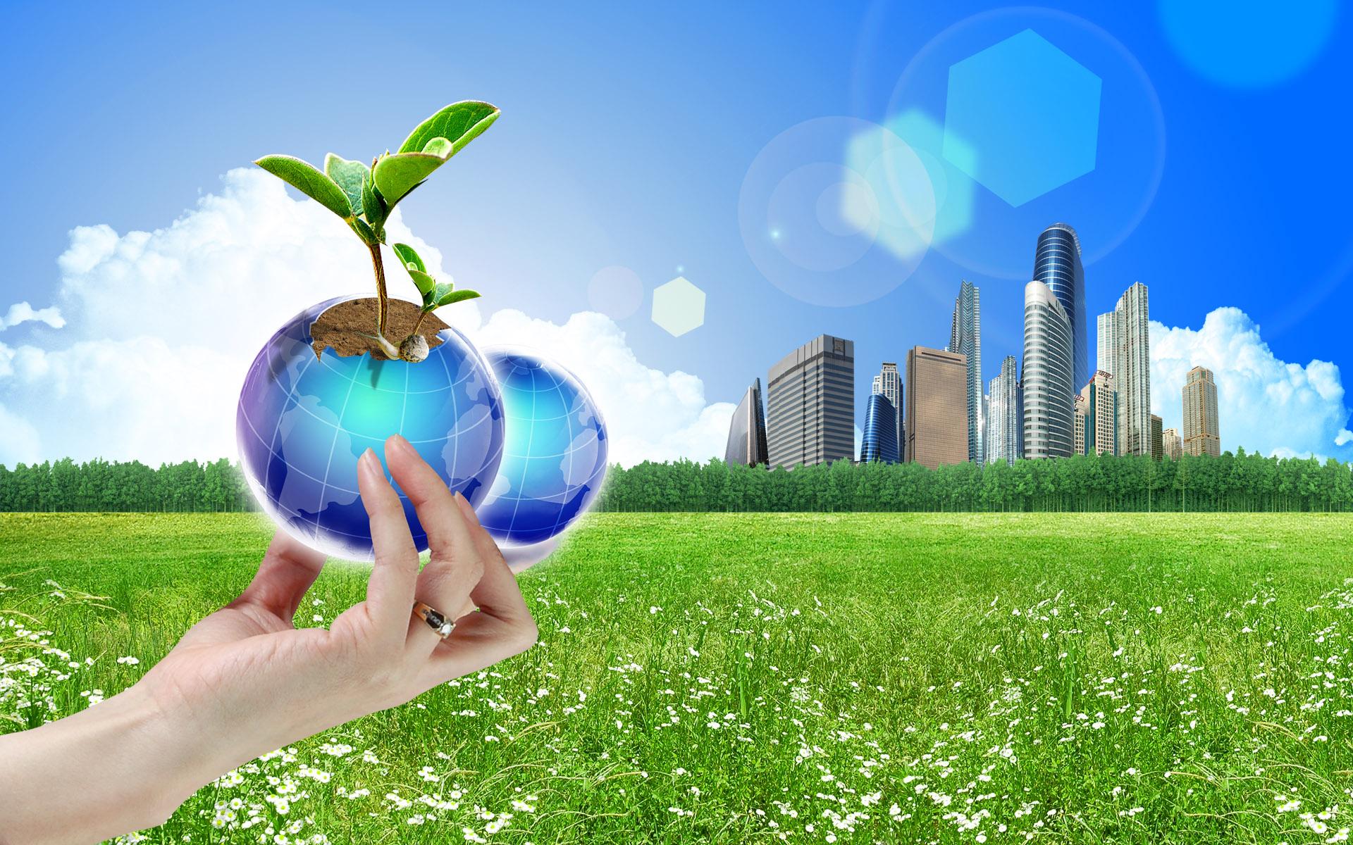 دستیابی به تولید پایدار و سبز با همیاری شرکتهای فناور و دانش بنیان