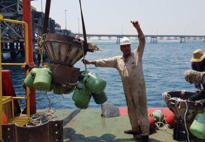 صادرات فرآوردههای نفتی متوقف نمی شود