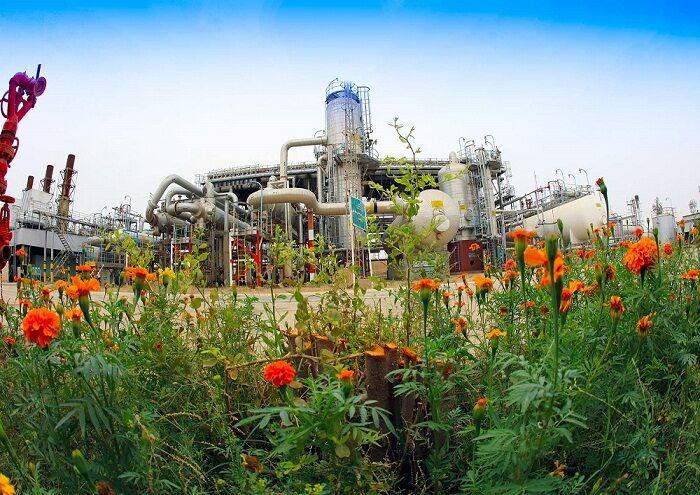 فعالیت های شرکت نفتی جهت حمایت از محیط زیست
