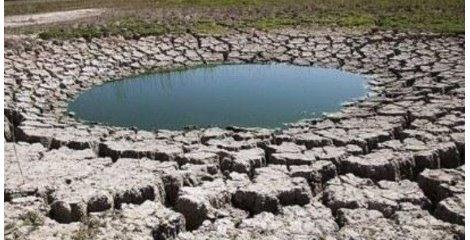 پیشبینی توجه به محیط زیست و آب در سند الگو