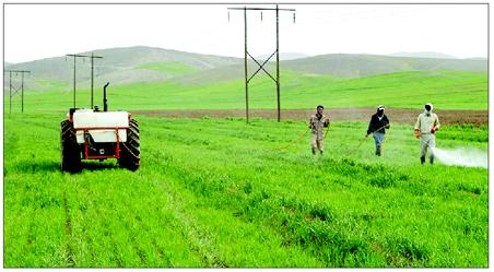 کشاورزان چگونه برق رایگان دریافت کنند؟