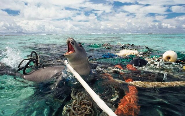 آسیب به محیط زیست در روزهای کرونایی