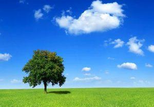 فواید کرونا برای محیط زیست جهان