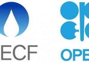 بررسی تأثیر کرونا بر بازارهای جهانی در نشست مشترک اوپک و GECF