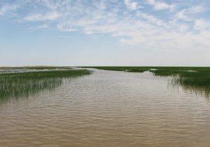 بزرگترین دریاچه آب شیرین ایران در آستانه خشک شدن