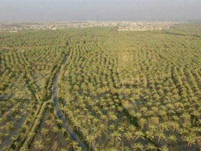 ۲.۴ میلیون هکتار از اراضی به سامانههای نوین آبیاری مجهز شد