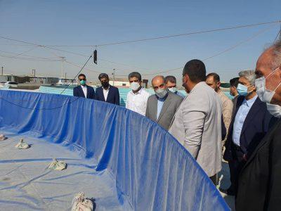 مشاور رییس جمهوری از پنج طرح در حوزه نفت و شیلات قشم بازدید کرد