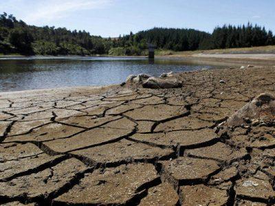 خطر خشکسالی و ضرورت تغییر الگوی کشت محصولات پرآبخواه در ابرکوه یزد