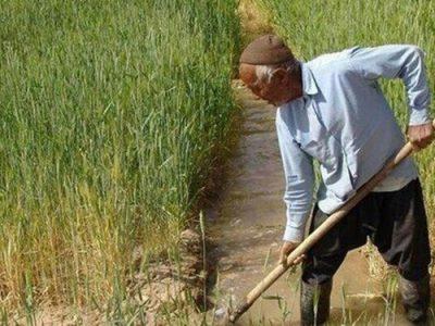 حجم آب مصرفی بخش کشاورزی کمتر از ۷۰ میلیارد مترمکعب است
