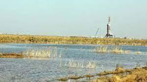 به خاطر نفت جان هور را گرفتند/ محیط زیست چشم خود را روی آب رفتن تالاب بست