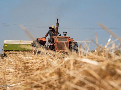 جزئیات جدید در مورد سهمیه سوخت ادوات کشاورزی فاقد پلاک