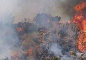 کمک به اطفای حریق ترکیه به دستور مقامات بالای کشور بود